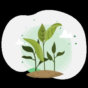 illustration végétale